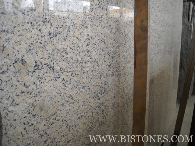 Roma Gold Slabs